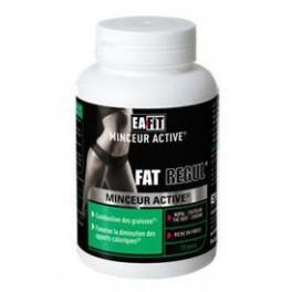 EAFIT FAT REGUL MINCEUR ACTIVE 90 CPR